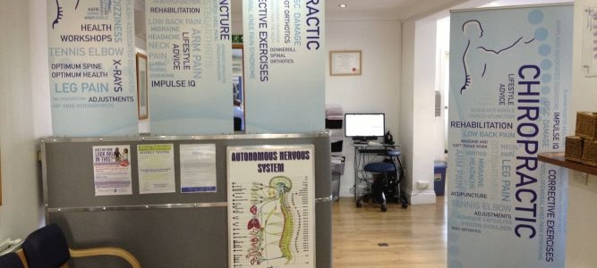 Chiropractic and The Gut Brain